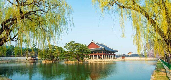 Südkorea entdecken